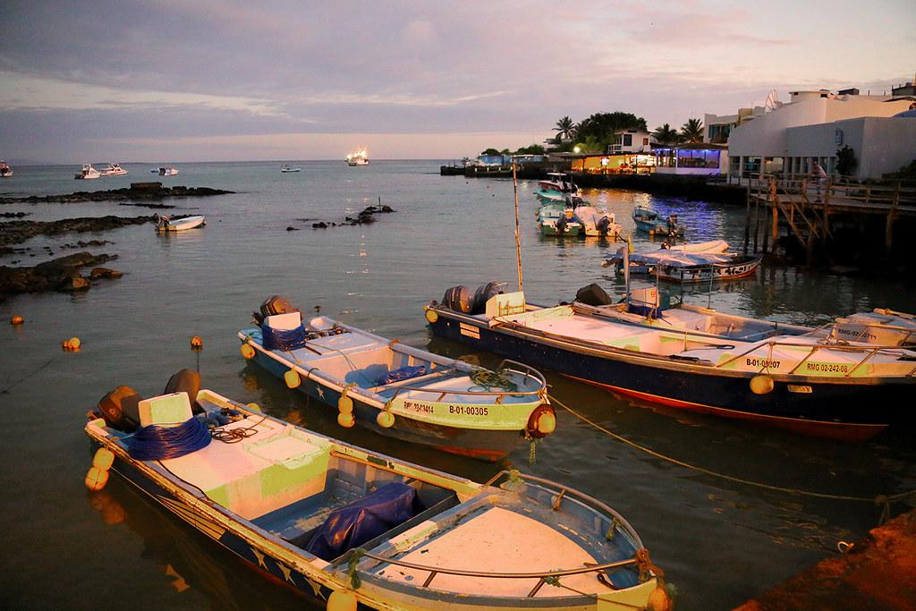 Galapagos evening IMG_8479