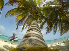 Belize_LaughingBirdCaye20140706_1409-2