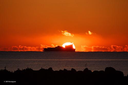 ocean morning sea sky orange seascape color beach japan sunrise canon ship seagull wave 日本 海岸 海 空 fukushima iwaki 船 2014 朝 morningglow 福島 福島県 fineweather 朝日 いわき 朝焼け いわき市 eos5dmarkⅲ eos5dmark3 ef100400mmf4556lisⅱusm