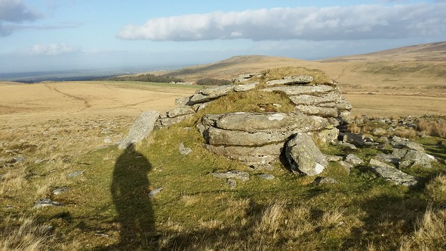 Lower outcrop on East Mill Tor