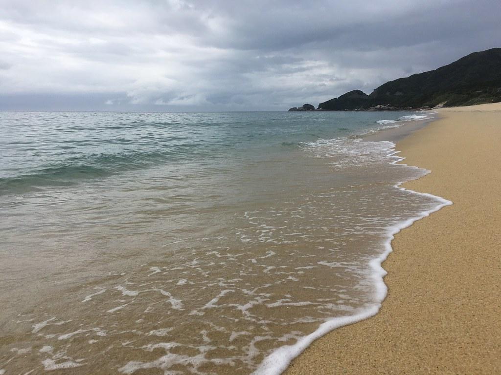 水はきれいで、波も澄んでいる