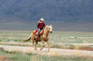 #mypubliclandsroadtrip 2016: Take the Backroads, Pony Express Trail