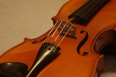 bowed string instrument, classical music, string instrument, violin, viola, violone, bass violin, double bass, close-up, string instrument,