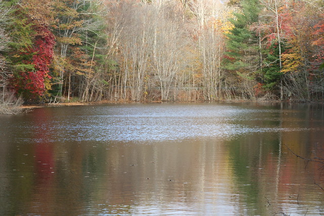James River State Park Fall 2014 (334)