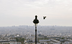 Paris '14 '18