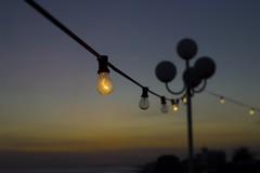 lightbulb at the beach