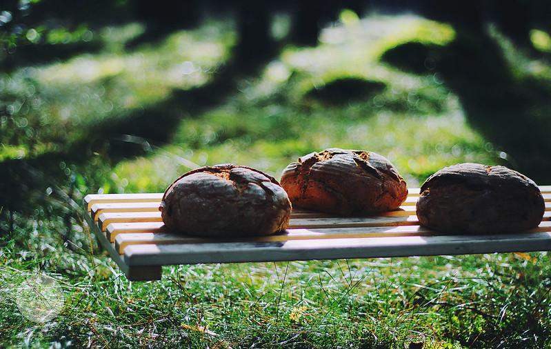 Bäckerei - BW (55) Kopie