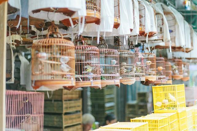 Hong Kong's markets www.apairandasparediy.com