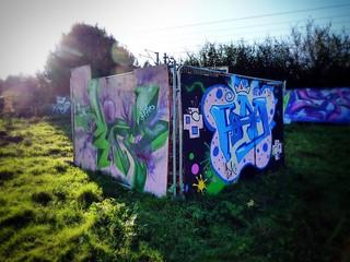 Street Art, The Green Backyard