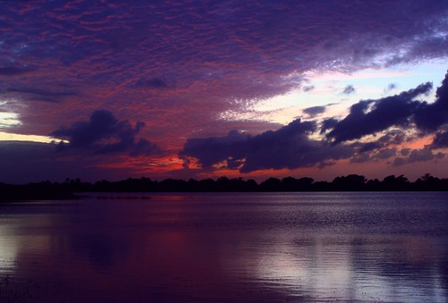 sunset red usa lake reflection fall nature beauty skyscape landscape colorful unitedstates natural florida horizon shoreline curve cloudscape levels firelight southflorida afterglow sawgrass naturephotography palmbeachcounty lakescape glassywaters 112314 cloudtexture violetvision artisticsunsetphotography