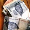 tartarugas #tartaruga #turtle #money #cash #dinheiro #brasil #saopaulo
