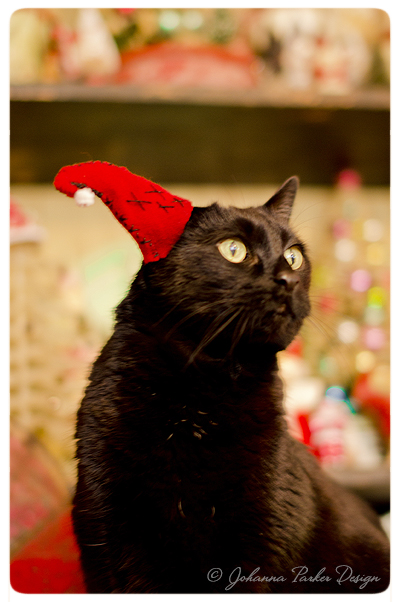 Merry-Christmas-Jack-surprised