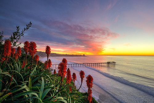 ocean winter sunset sun pier aloe sandiego lajolla scripps scrippspier touit2812
