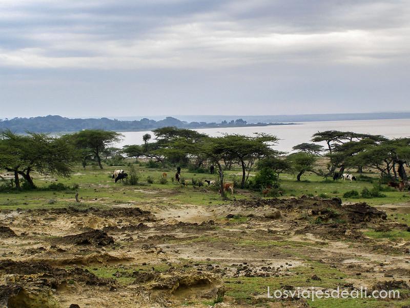 lagos de etiopia paisaje lago langano