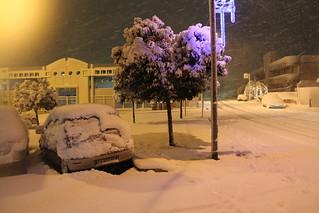 neve a polignano 2014 2