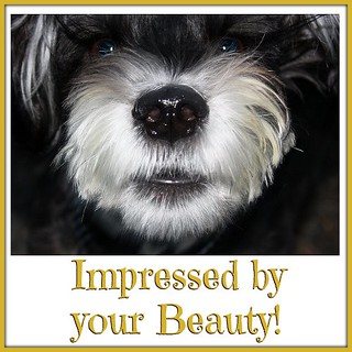Impressed by your Beauty!