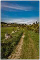 le printemps à Grandrieu - Photo of Saint-Symphorien