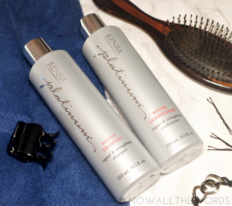 kenra platinum hair care (2)