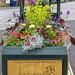 The Ormond Connolly Memorial Planter.