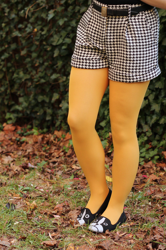 Yellow Tights, Houndstooth Shorts, and Boston Terrier Flats