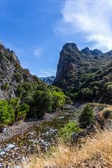 Kings Canyon & Sequoia - 295
