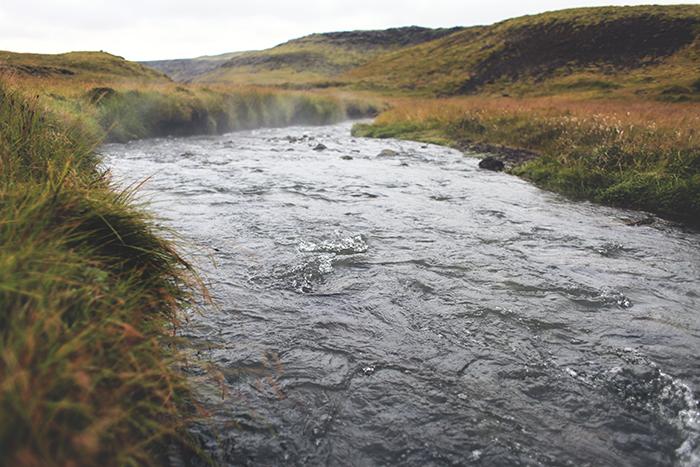 Iceland_Spiegeleule_August2014 029