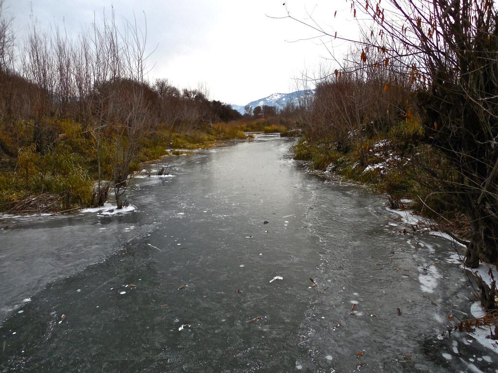 Frozen beaver dam