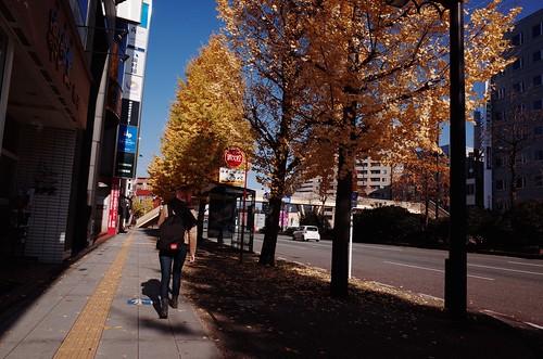 乙女の笑顔と秋の空