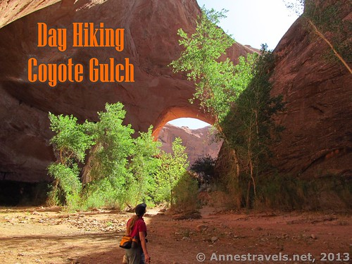 Day Hiking Coyote Gulch, Grand Staircase-Escalante National Monument, Utah