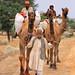 Country Roads.............IMG_7522 by Nadeem Khawar.