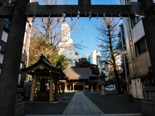 shizuoka1412- (9 - 10)