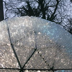 Geodesic Bottle Dome