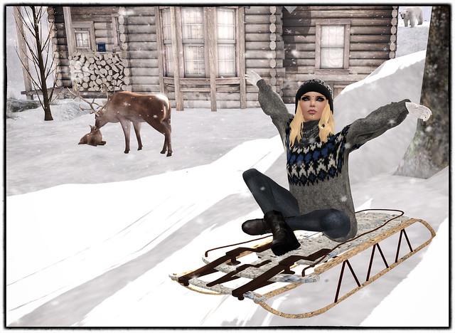 Sliding down the snow 1