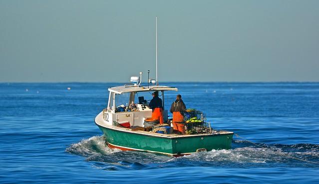 Lobster fishing in la jolla flickr photo sharing for Lobster fishing san diego