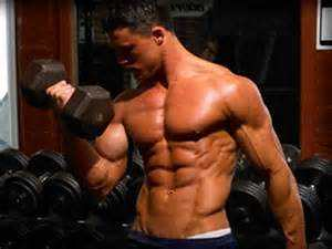 The Best Muscle Building Workout Routines 1