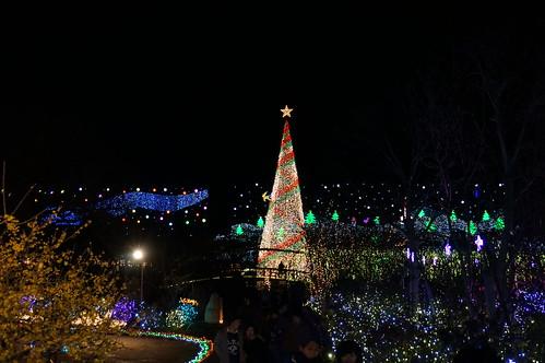 Flower Fantasy 2015 illumination at Ashikaga Flower Park 20