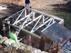 coop renovation IMG_2641