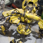 GBWC2014_World_representative_exhibitions-10