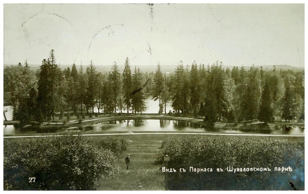 Шуваловский парк. Вид с Парнаса. Аукцион 1