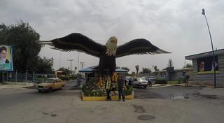 A weird big eagle