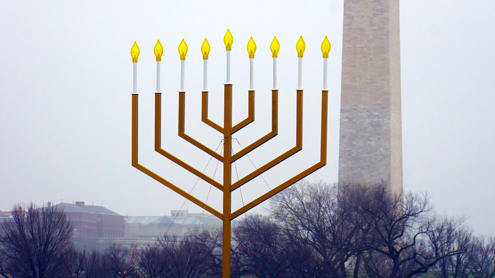 National Menorah Washington DC USA 50587