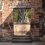 Image of Wat Si Sawai near Ban Na. travel nature thailand bangkok culture buddhism temples chiangmai krabi lanna tempel sukhothai lampang kolanta ayutthaya reizen 2014 arps paularps afsdxnikkor18140mm