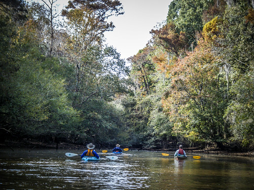 Savannah River from Stokes Bluff with LCU Nov 7, 2014, 4-18 PM Nov 8, 2014, 1-50 PM