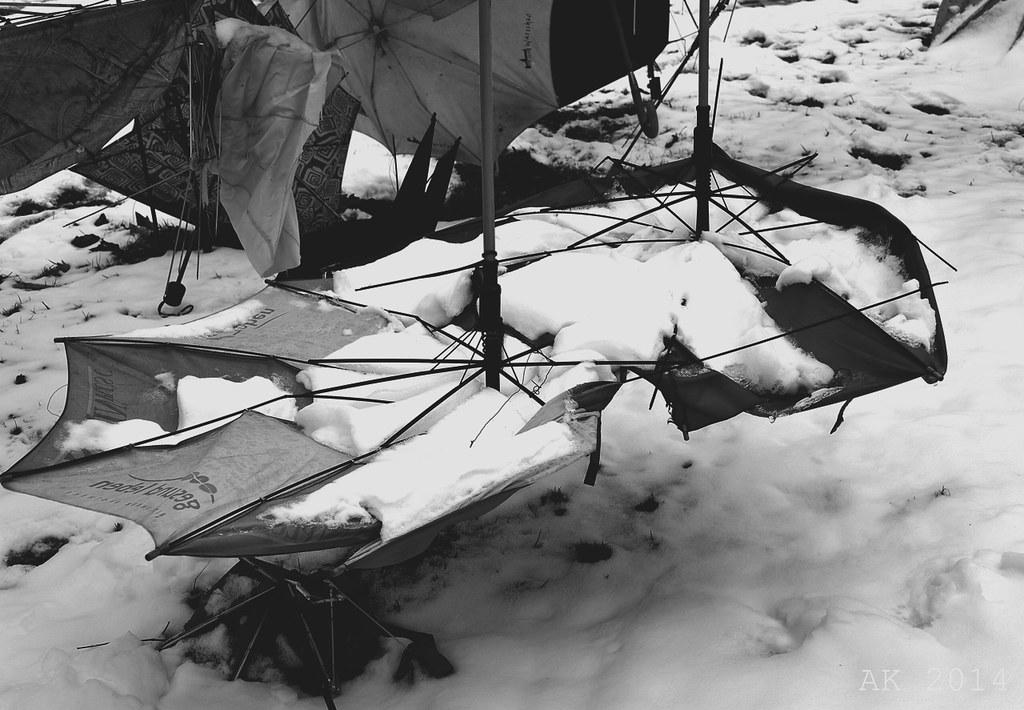 Umbrella Art Stammheim