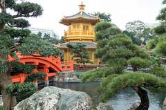 Nan Lian Garden - Hong Kong