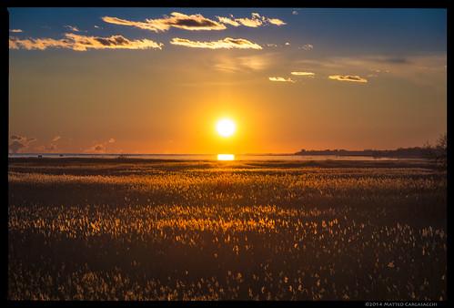 sunset italy gold golden italia tramonto oro isonzo gorizia friuliveneziagiulia dorato caneo
