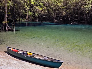 Canoe Trip to Cypress Springs