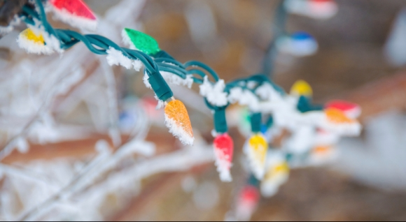 Making the Switch: How to Move from Traditional to LED Holiday Lights