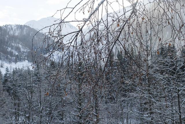 Oberwald - Grimselpass
