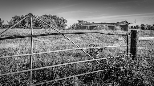 ranch old trees blackandwhite bw abandoned monochrome field barn fence us blackwhite weeds gate texas unitedstates farm derelict hff sealy